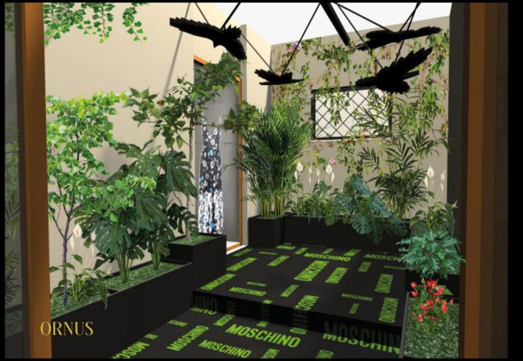 Progetto 3d  giardino