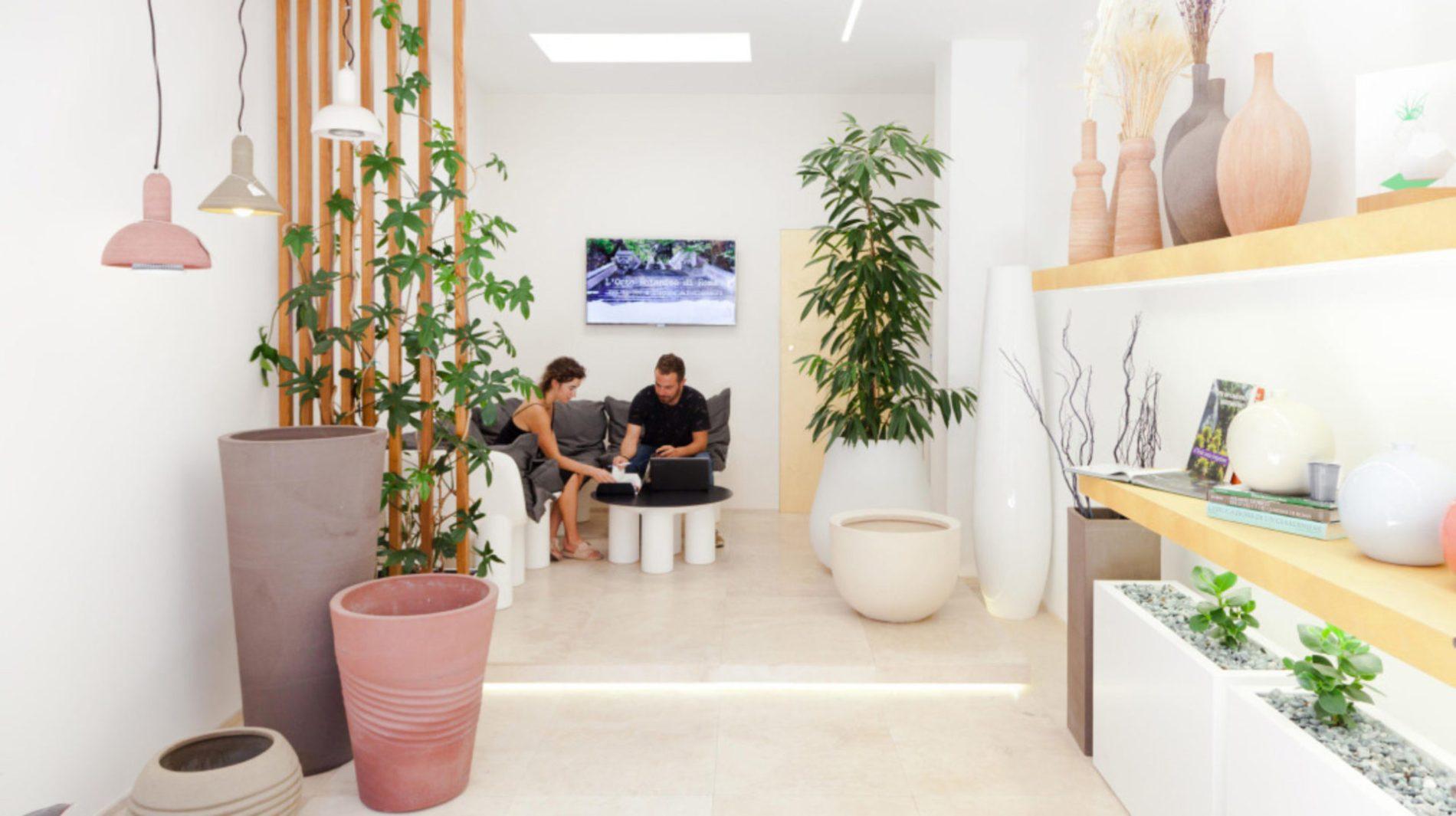 Garden design ornus garden design. piante illuminazione e