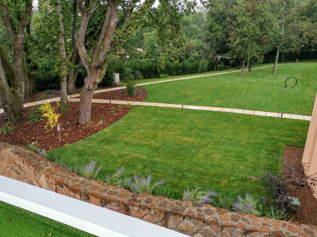Progettazione giardini. Prato pronto e vialetto in pietra. Paesaggista Daniele Proietti.